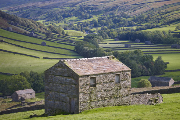 Which Yorkshire Dale boasts a spectacular variety of landscapes and old limestone field barns?