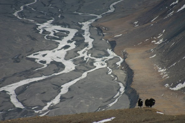 Ellesmere Island, Canada