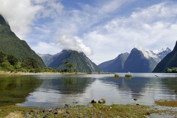 Deals of the week: New Zealand, Sorrento and Florida