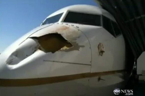 Bird strike leaves HUGE hole in plane upon landing
