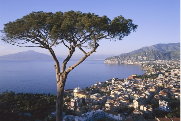 A British holidaymaker plunged 130ft to his death over a cliff in Sorrento, Italy.