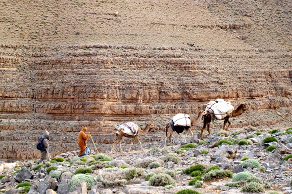 Join the Berber migration through Morocco's desert