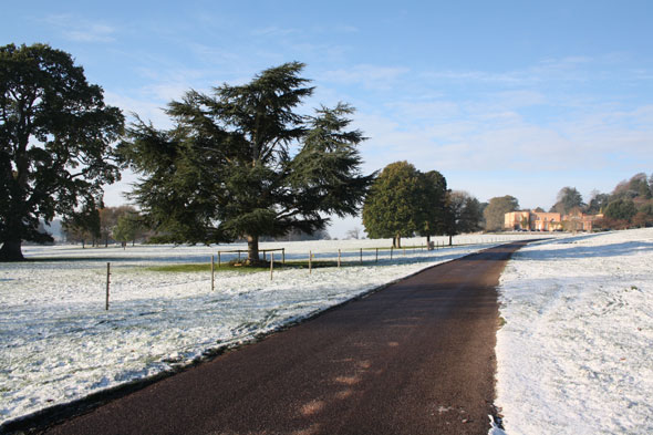 Killerton, Devon