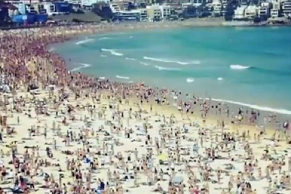Video: Thousands of swimmers flee sea at Bondi Beach after New Year's Day shark scare