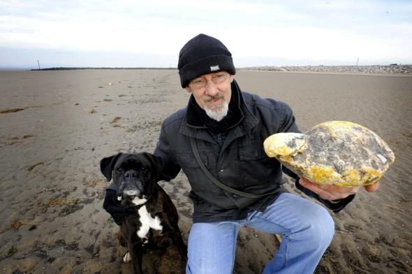 Walker finds rare whale vomit worth £100k on British beach