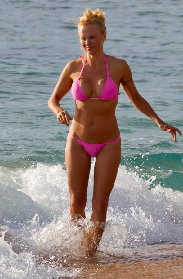 Pam anderson pictures bikini agree, this