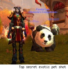 Ok, so it's actually an old PTR bug, but a pet panda would be awesome.
