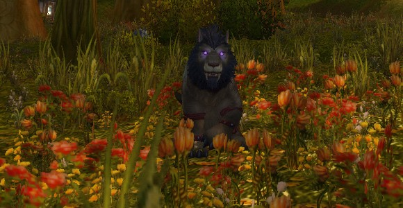Mists of Pandaria Druid Symbiosis updated