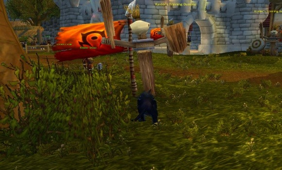A Misty Catfight The feral druid 101 guide