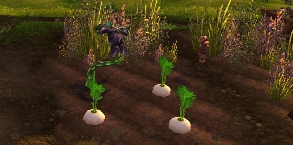 Reputation in review The Tillers