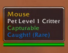 3 more useful pet battle addons