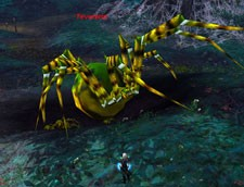Horrify enemies with hordes of angry spiders