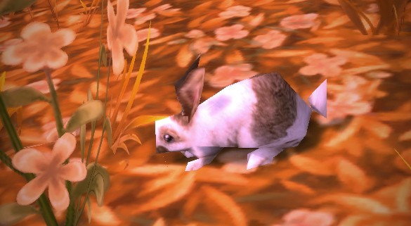 Adopt a Spring Rabbit now that Noblegarden is here MON