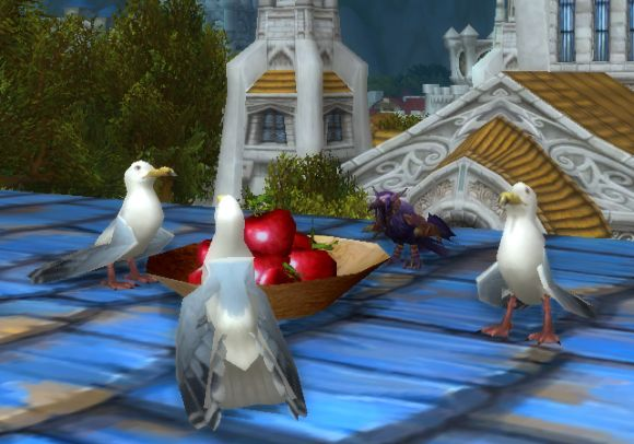 Around Azeroth For the birds SATURDAY