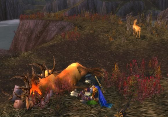 Around Azeroth The refined carnivore FRIDAY
