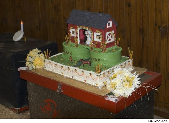 redneck wedding cakes craft