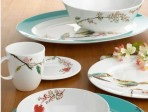 Lenox Chirp China