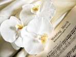 Selecting Your Wedding Ceremony Music