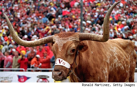 texas longhorns mascot. Texas Longhorns#39; mascot