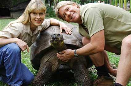 steve irwin; crocodile hunter; australia zoo