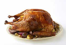 roast turkey; alton brown