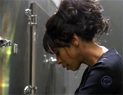 Khandi Alexander as Alexx Woods on CSI: Miami.