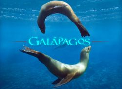 Galapagos