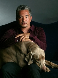 Cesar Millan Dog Whisperer