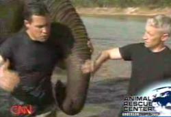 jeff corwin; anderson cooper; elephant