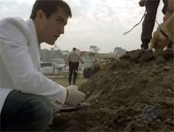 Wolfe checks out a pile of dirt.