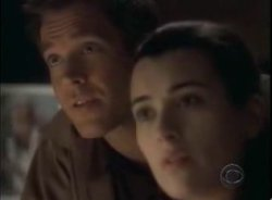 Michael Weatherly, Cote de Pablo