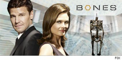 David Boreanaz and Emily Deschanel of Bones