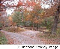 Bluestone Stoney Ridge
