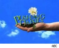 Pushing Daisies logo