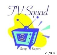 TVS logo soap