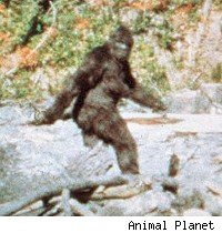 Bigfoot is only one of the mythical beasts walking on Animal Planet's Lost Tapes.