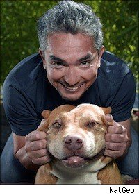 Cesar Milan, the Dog Whisperer