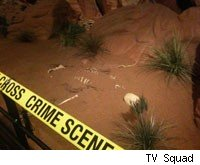 You get to inspect the crime scene at MGM Grand Las Vegas' CSI: The Experience.