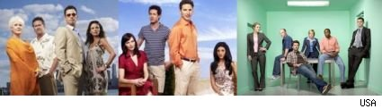 The character-driven shows of USA Network...'Burn Notice,' 'Royal Pains,' and 'Psych'