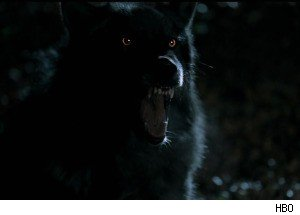 Werewolves Attack on 'True Blood'
