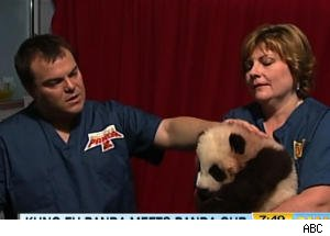Jack Black Meets Panda Cub, Names It After Animated Character