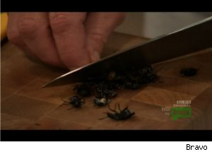 Bugs on 'Top Chef Masters'