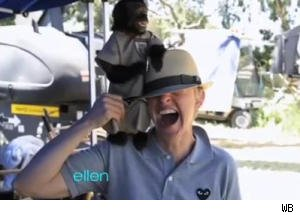 Ellen DeGeneres Gets Smacked by a Monkey