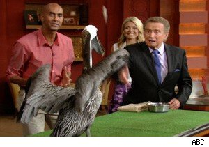Regis Philbin tosses food to a pelican on 'Live With Regis and Kelly'