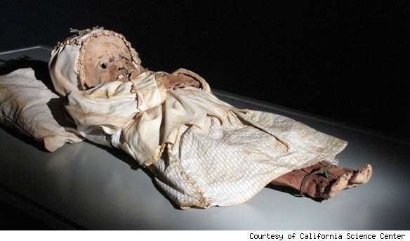 The gallery for --> Real Egyptian Baby Mummies Real Egyptian Baby Mummies