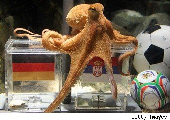 paul world cup octopus