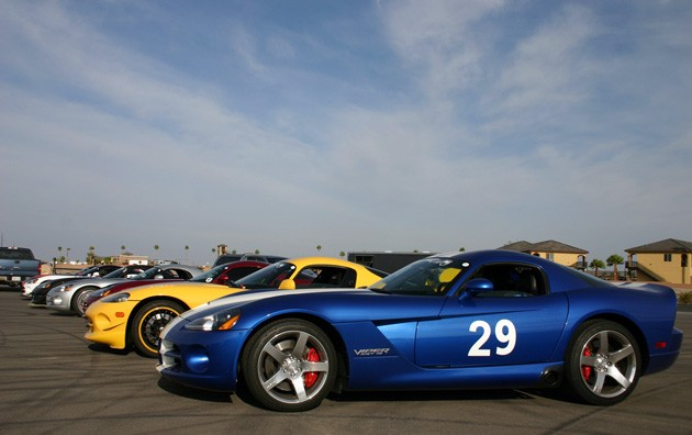 Vipers lined up for the Viper Cup Finale Weekend