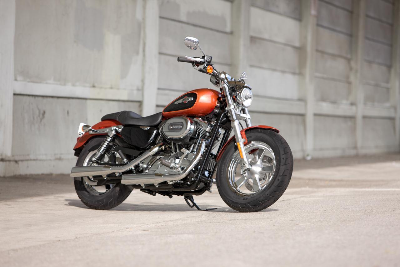 2007 Harley-Davidson XL1200C Options and Equipment