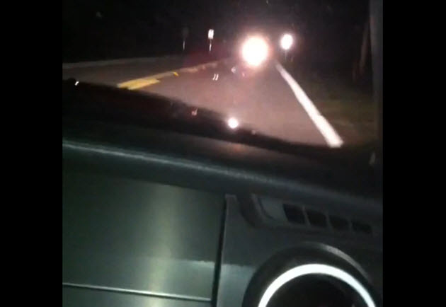 shelby gt500 hits deer