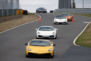 Lamborghini Gallardos on track